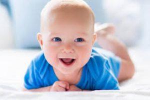 pit-beba