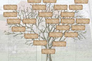 75031ea1d6_122499_constituer-arbre-genealogique