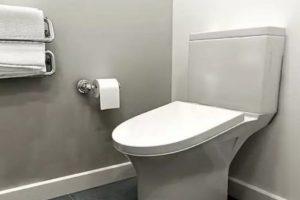 WC_Skoljka_Solja_Foto_Standard_Toilet1