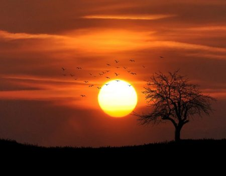 landscape-nature-sky-sunset-36744